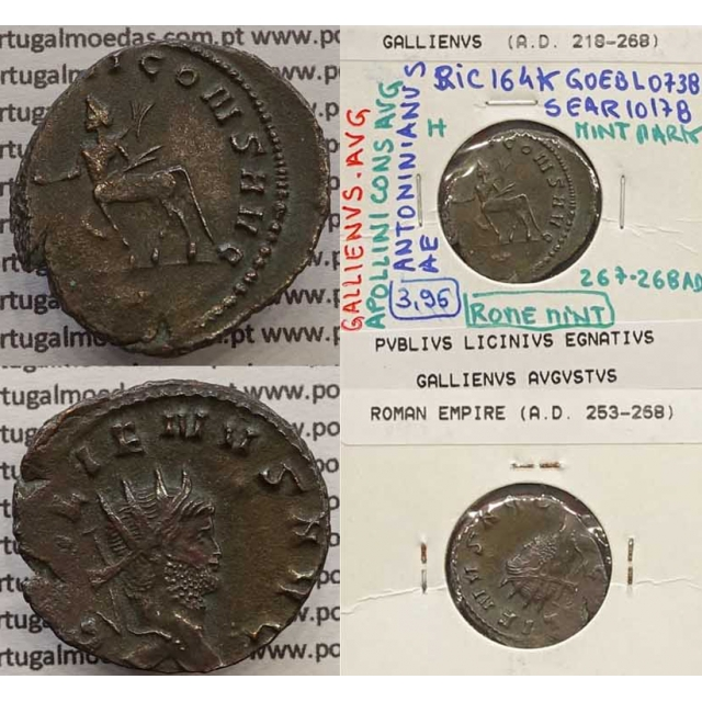 GALLIENUS - ANTONINIANO - GALLIENVS AVG / APOLLINI CONS AVG (267-268 d.C) (253 d.C A 268 d.C